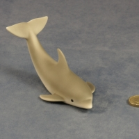 S090 - Swimming Dolphin