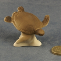 M023 - Small Turtle