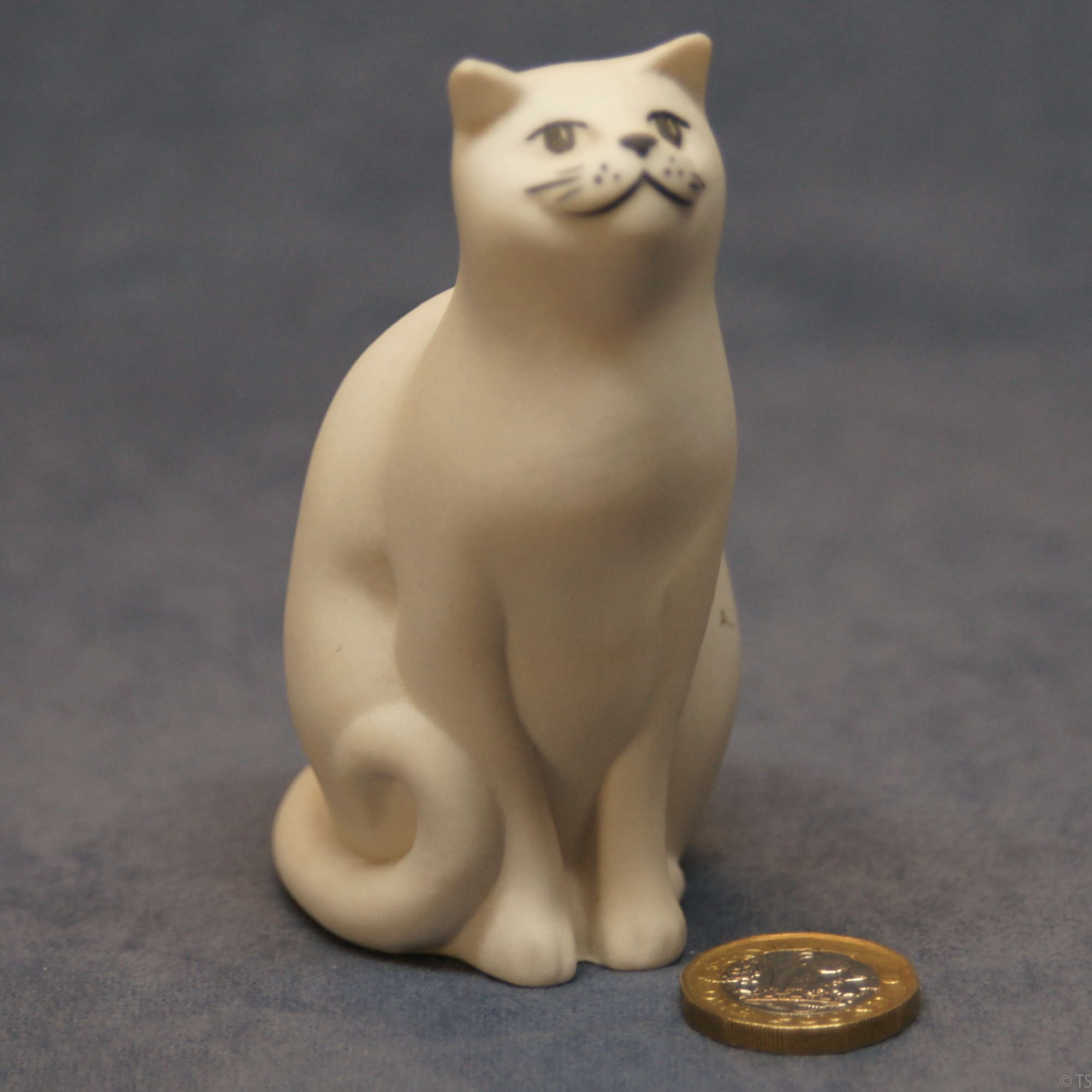 S003 - White Tom Cat