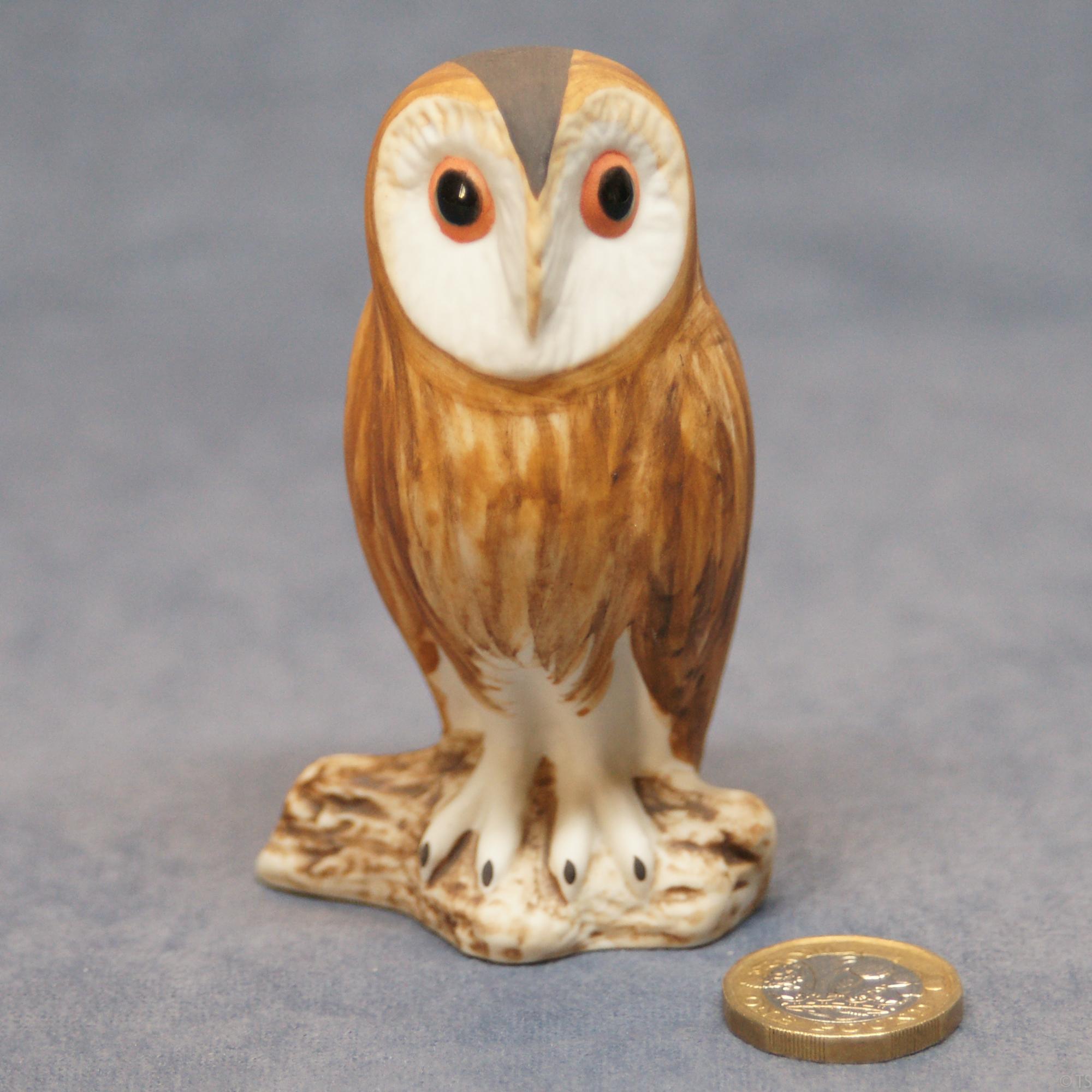 Owl - Barn Owl 4