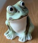 Green Frog - Matt