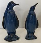 Blue King Penguin Pair