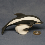 S120 - Diving Hourglass Dolphin