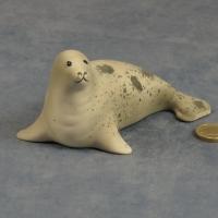 S077 - Grey Seal