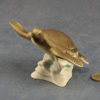 S161 - Medium Turtle