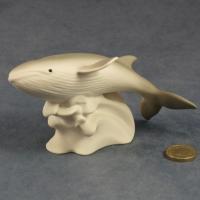 S086 - Minke Whale