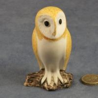 S024 - Barn Owl