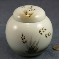 Ginger Jar Grasses