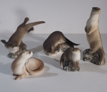 Otter Collection