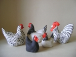 Hens - Various