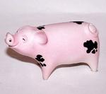 S022 - Gloucester Old Spot Pig