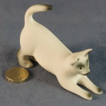 S080 - Playing Siamese Cat